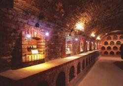 Siklos Castle - Villany Wine Tasting