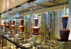Шоколадная фабрика Зоттер - Замок Ригерсбург - Термальный курорт Блюмау