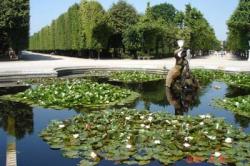 Vienna Grand City Tour with Schonbrunn